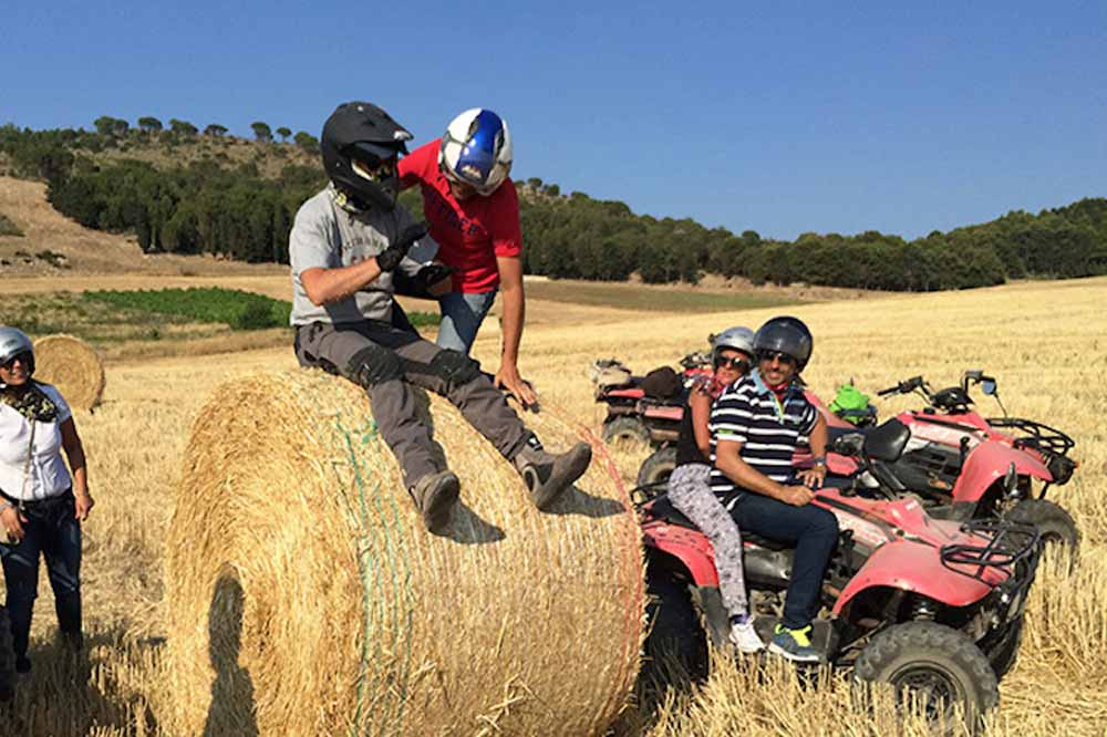 Quad bike ride along the countryside of Trapani and visit to the Archaeological Park of Segesta-image-8