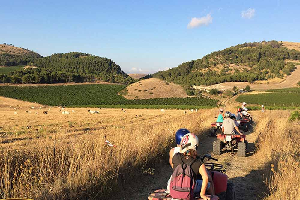 Quad bike ride to Trapani and thermal baths in the hydrothermal Springs of Segesta-image-4