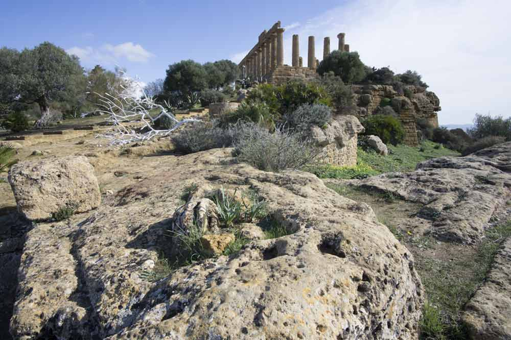 Guided tour along the Valley of the Temples and the Archeological Museum in Agrigento-image-8