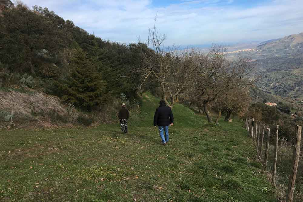 Trekking in the province of Palermo, discovering Gurfa Caves and Tasting-image-7