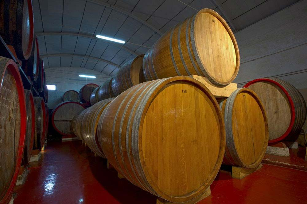 Visit to a winery and wine tasting in Marsala-image-4