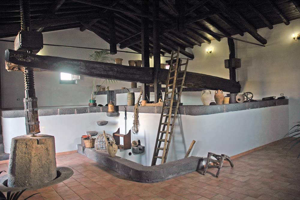 Visit to a cheese factory on Etna, wine and cheese tasting on a holiday farm-image-7