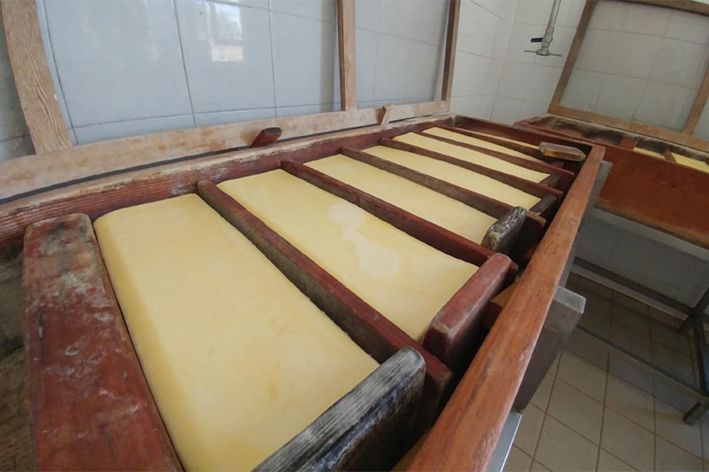 Visit to a farm house in Modica and tasting of cheese along with other typical products-image-7