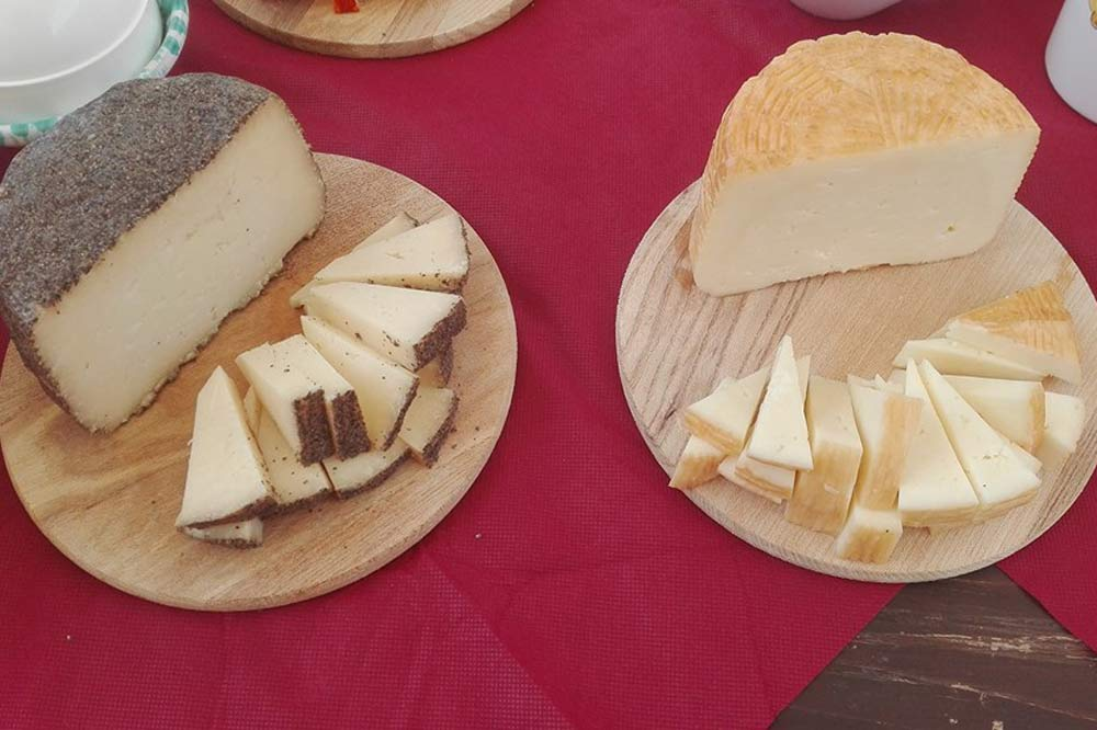 Tour of a cheese factory and cheese tasting in Marsala-image-8