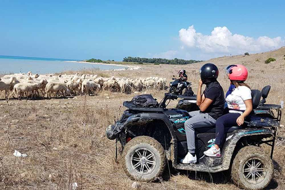 Quad bike tour of the Agrigento province between nature and sea-image-5