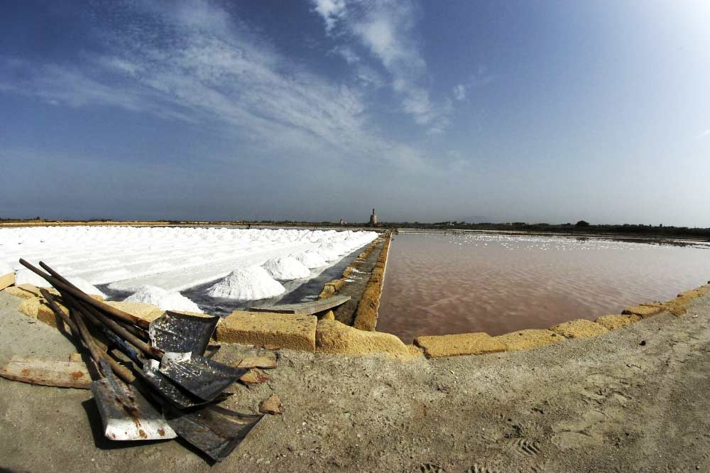 Nature, safari and trekking at the Marsala Saltpans-image-9