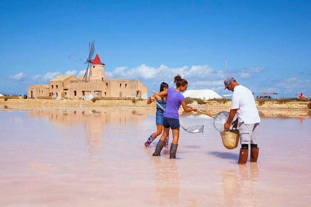 Visit to the salt pans of Marsala, tasting and harvesting of salt in the vicinity of Trapani-image-4