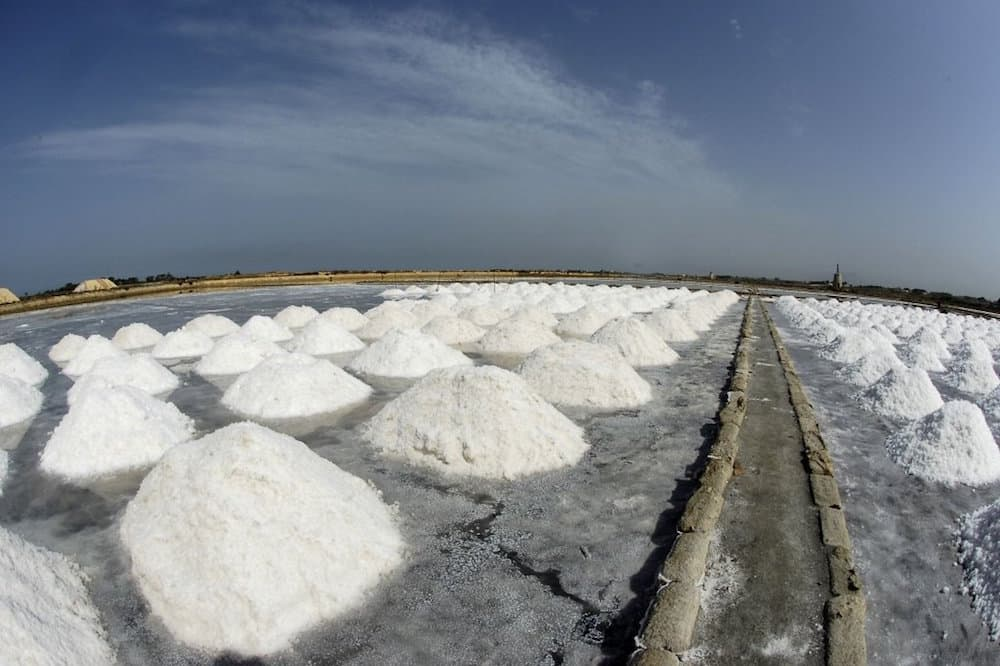 Visit to the salt pans of Marsala, tasting and harvesting of salt in the vicinity of Trapani-image-5